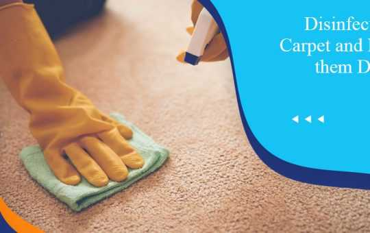 Disinfecting the Carpet and Making them Dirt Free